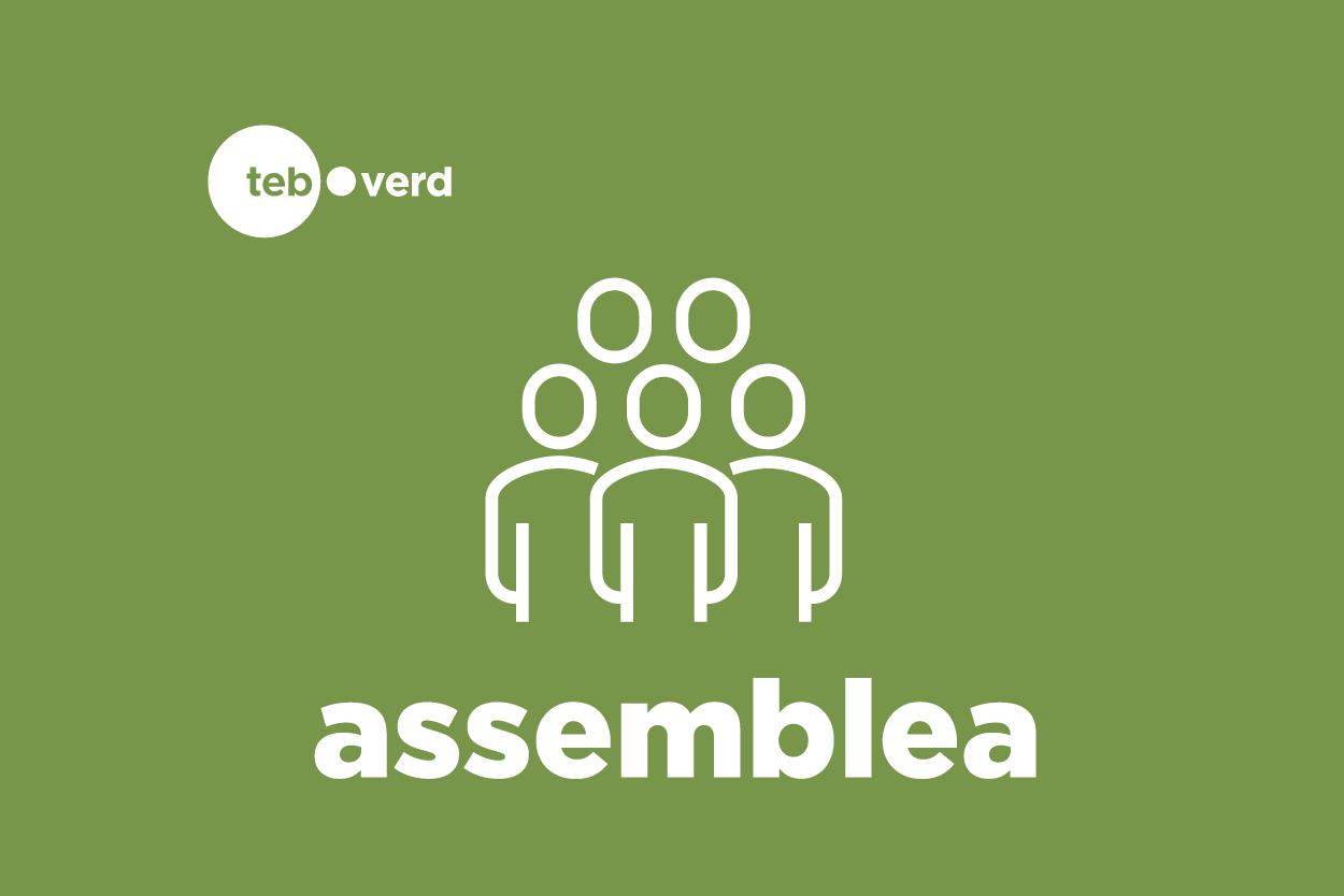 logotip assemblea teb verd