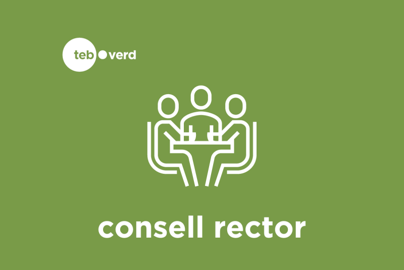 Logotip Consell Rector TEB Verd ok
