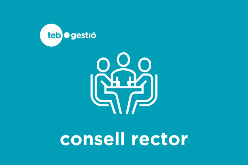 Logotip Consell Rector TEB Gestió