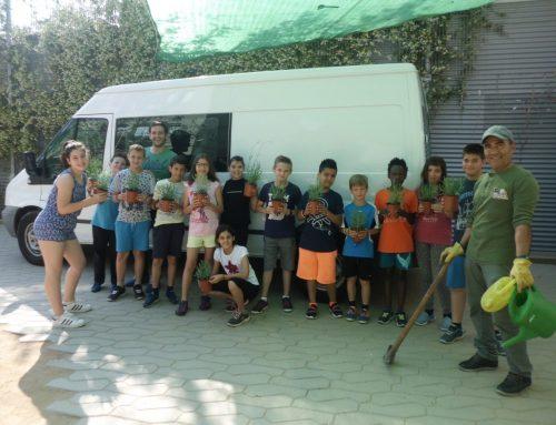 Escoles verdes: promoció de la cultura de la creació i gestió d'espais verds a la ciutat