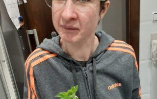 Què bonic ha sortit el germinat de la Anna Pinar!